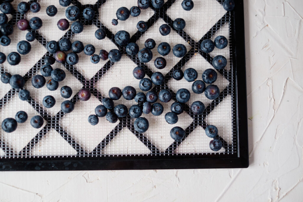 Prepare Blueberries to Dehydrate
