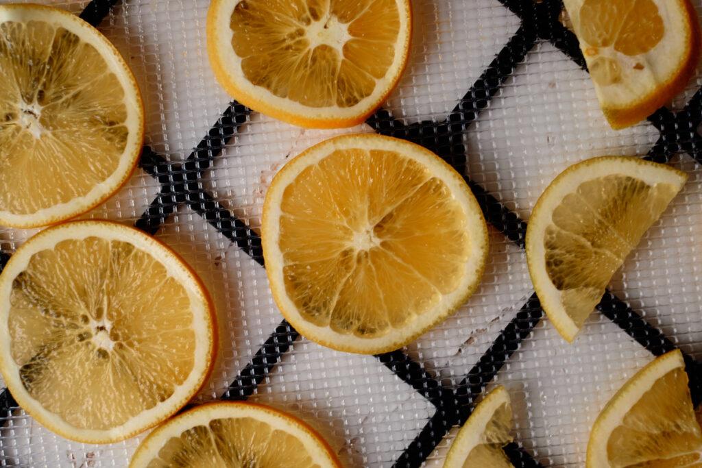 orange slices on dehydrator rack