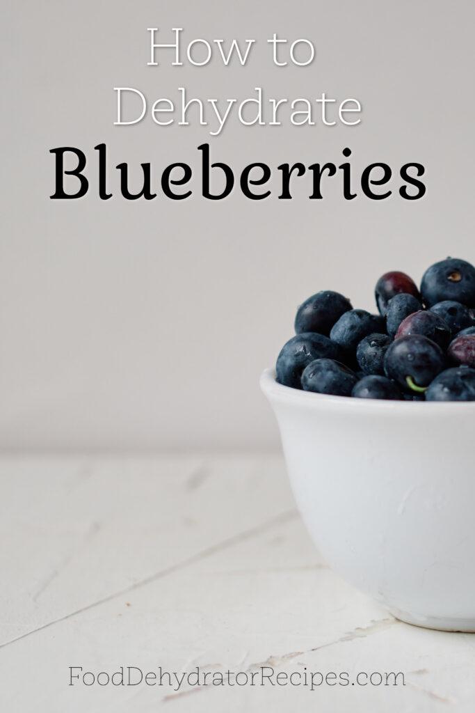 Dehydrate Blueberries Pinterest