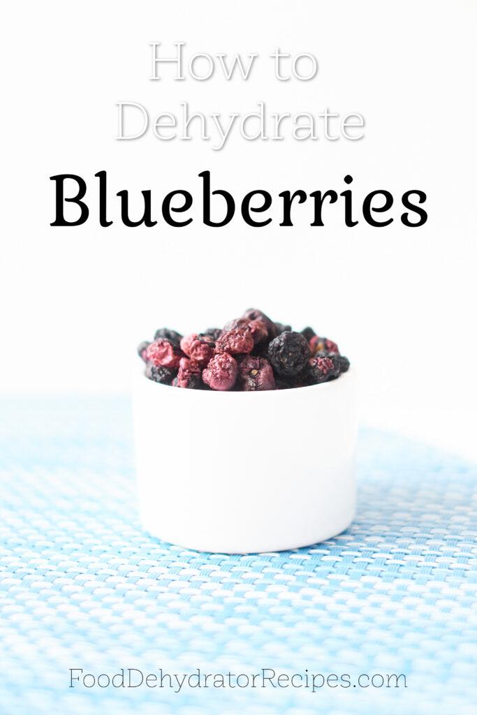 Blueberries deydrated in white bowl PInterest