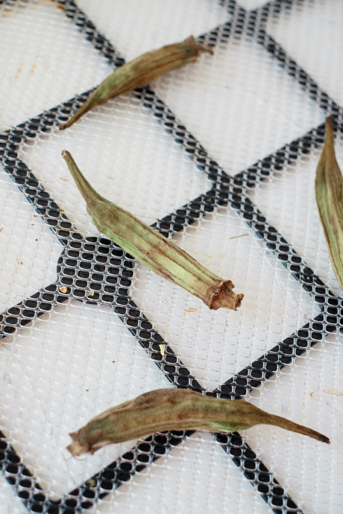 dehydrated okra on a tray